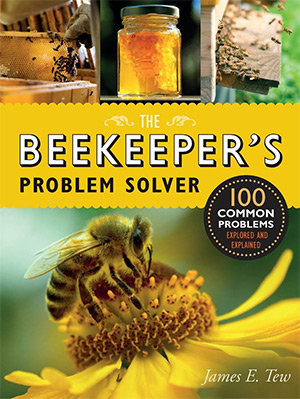 the beekeepers problem solver