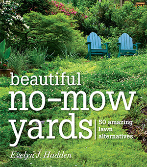 beautiful nomow yards