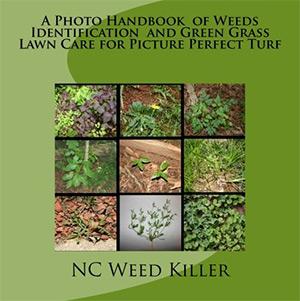 photo handbook of weeds