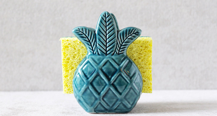 Genial Pineapple Sponge Holder