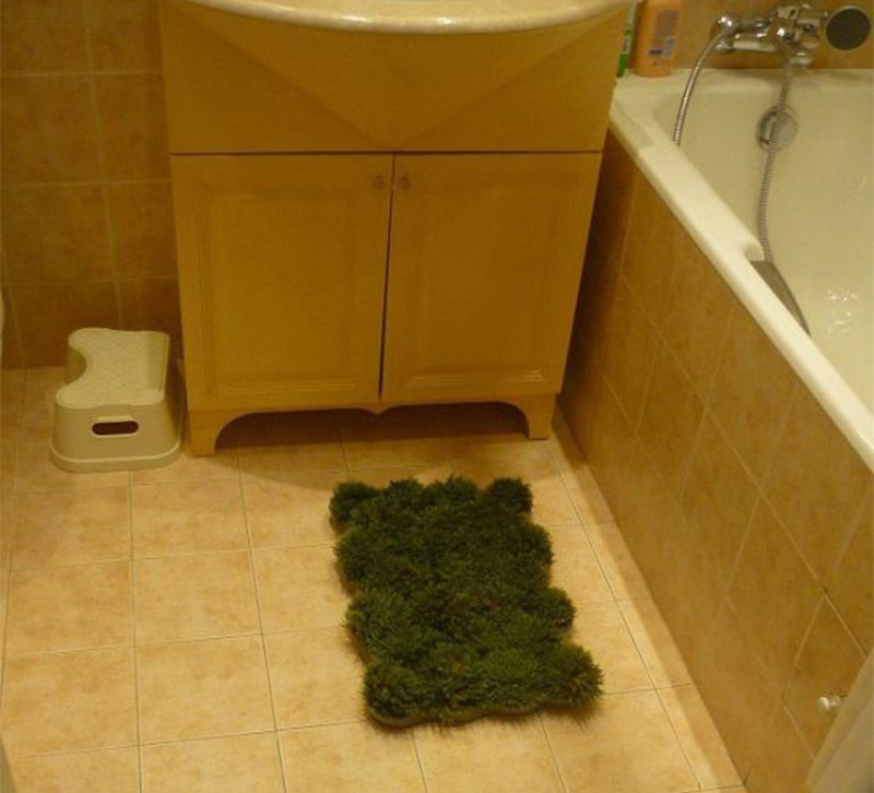 Another Outdoors Indoors Idea Moss Covered Bath Mat