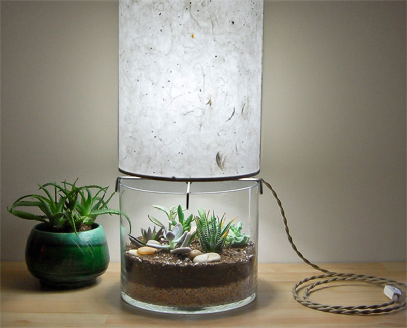 Charmant Home Decor Terrarium Table Lamp Custom Design Etsy